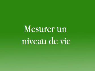mesurer un niveau de vie