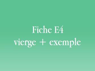 E6 TÉLÉCHARGER VIERGE FICHE