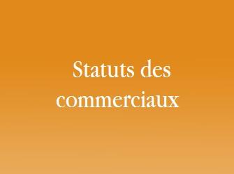 statuts des commerciaux