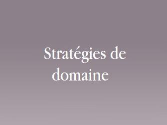 stratégie domaine