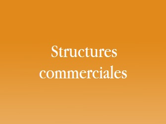 structure commerciale