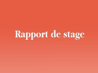 Rapport De Stage En Anglais Bts Nrc
